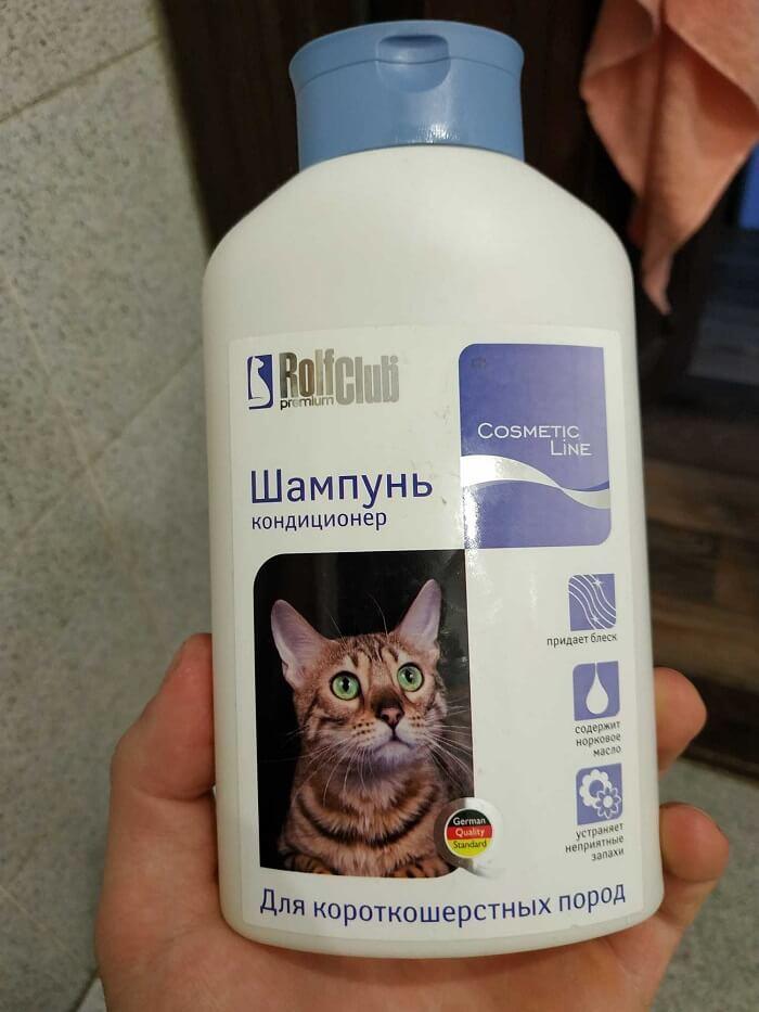 Шампунь для бурманской кошки