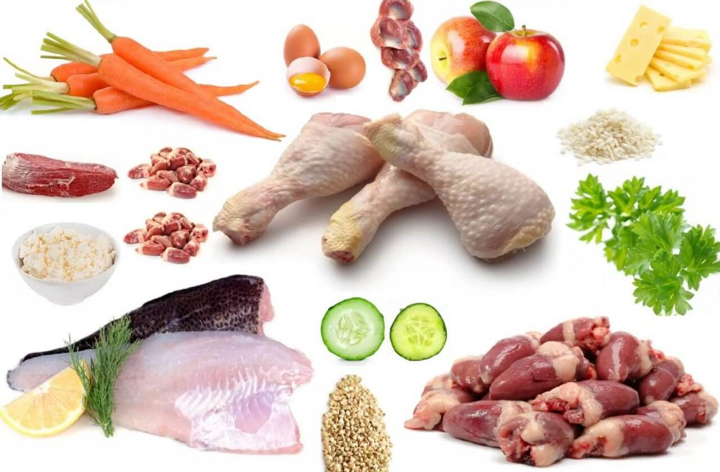Натуральное питание для уссурийских кошек