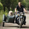 Как правильно ездить на мотоцикле с собакой
