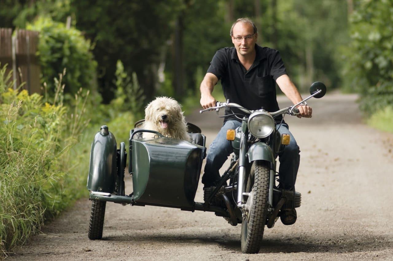 Сиденье для собак на мотоцикл
